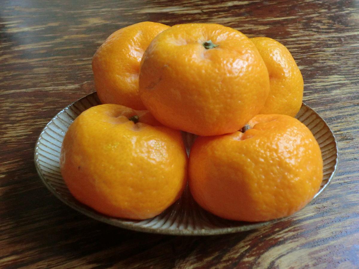 komikan  fruit