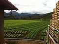 Salada - panoramio (7).jpg