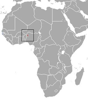 Savanna swamp shrew Species of mammal