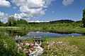 Savastvere järv (Alatskivi jõgi).jpg