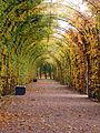 Schlosspark Güstrow.JPG