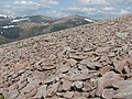 Scree, Beinn Bhrotain - geograph.org.uk - 839702.jpg