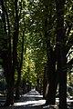 Search Zagreb Mirogoj Cemetery crkva Krista kralja na Mirogoju 08.jpg