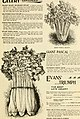 Seed annual, 1899 (1899) (14778634091).jpg