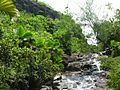 Seychelles 031.JPG