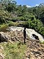 Sezibwa falls - Uganda.jpg