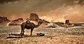 Shahdad desert 03.jpg