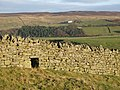 Sheep hole near High Acton - geograph.org.uk - 620430.jpg