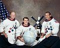 Skylab 4 suited crew portrait.jpg