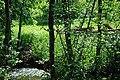 Slap na potoku u Tomašnici - panoramio.jpg