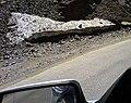 Snow at Summer - Shemshak - Dizin Road - panoramio - Behrooz Rezvani (1).jpg
