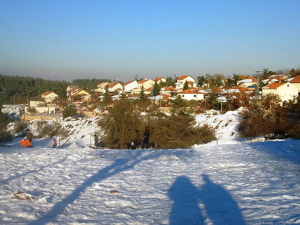 Snow in Birya December 2013 1