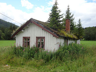 Sod roof - House in Hemsedal in immediate need of repair. Trees will soon destroy a sod roof. Photo: Roede