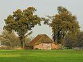 Soest, PvdBreemerweg bij 3 schaapskooi (1) GN0342wikinr48.jpg