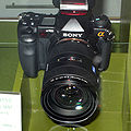 Sony alpha 900-IMG 2446.jpg