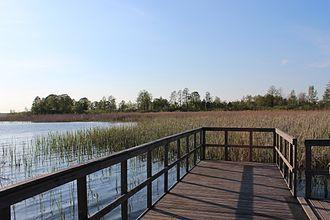 Polesie National Park - Łukie lake, with Spławy Trail