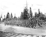 Spruce Division soldiers at Coats-Fordney Lumber company camp no 3, ca 1918 (KINSEY 768).jpeg