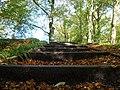 Stairs on footpath in Calderglen Country Park - geograph.org.uk - 1107216.jpg