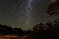 Star Trails (26609738301).jpg