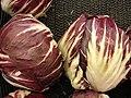 Starr-070730-7861-Chicorium intybus-heads-Foodland Pukalani-Maui (24522883289).jpg