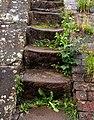 Steps on Cholmondeston Lock - geograph.org.uk - 1458625.jpg