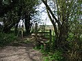 Stile for footpath to Chilham - geograph.org.uk - 785056.jpg
