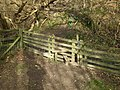 Stile into Woods - geograph.org.uk - 719871.jpg