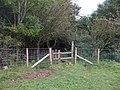 Stile near Tai-mawr - geograph.org.uk - 1527219.jpg