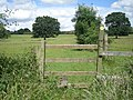 Stile on a little used footpath - geograph.org.uk - 872773.jpg