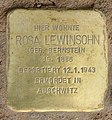 Stolperstein Schönwalder Str 64 (Spand) Rosa Lewinsohn.jpg