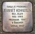 Stolperstein für Jeannet Kohnstein.JPG