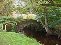 Stone footbridge - geograph.org.uk - 1043483.jpg