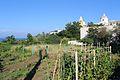 Stromboli - panoramio (39).jpg