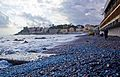 Sturla beach - velella.jpg