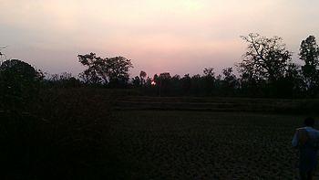 Sunligt at evening.jpg