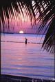 Sunset at Key Biscayne, Florida - NARA - 194568.tif
