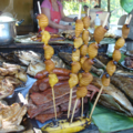 Suri Iquitos Peru.png
