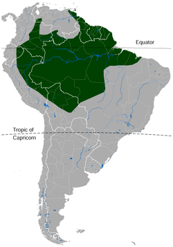 Suriname Toad Pipa pipa distribution map.png
