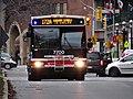 TTC bus 7700 on the Esplanade, 2014 12 28 -e (15971080780).jpg