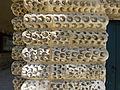 Tanlay-Bossage vermiculé (5).jpg