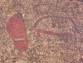 Tanumshede 2005 rock carvings 6.jpg