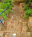 Taormina yard stairs.jpg