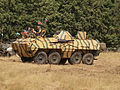 Tatra OT64 APC (1960) (Chzech) owned by David Froggatt pic15.JPG