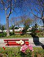 Tavira (Portugal) (17145876673).jpg