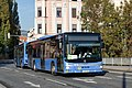 Testbus Graz - Flickr - danihak at.jpg