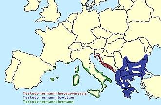 Hermann's tortoise - Image: Testudo hermanni range map