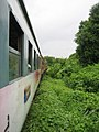 Thailand side trainride.jpg