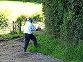 The Euro-wasp exterminator - Pendomer - geograph.org.uk - 1431979.jpg