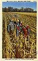 The NEW IDEA one row corn picker (NBY 6475).jpg