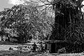 The Nambanga House (1) (Imagicity 440).jpg